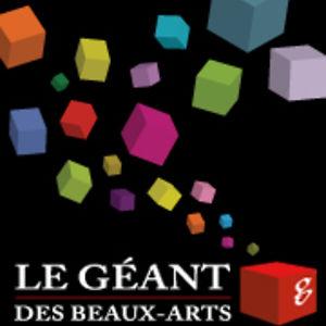 Le g ant des beaux arts on vimeo - Catalogue le geant des beaux arts ...