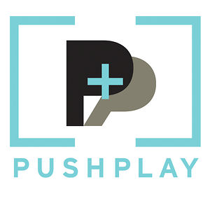 Profile picture for Pushplay Productions