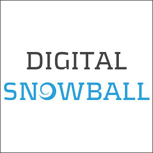 Profile picture for Digital Snowball