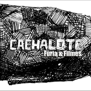 Profile picture for Cachalote Fúria e Filmes