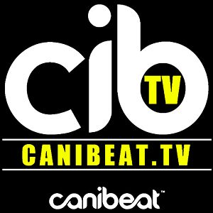 Profile picture for Canibeat.TV