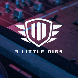 Profile picture for 3 Little Digs