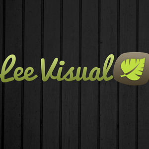 Profile picture for Lee Visual