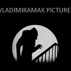 Profile picture for Vladimiramax Pictures