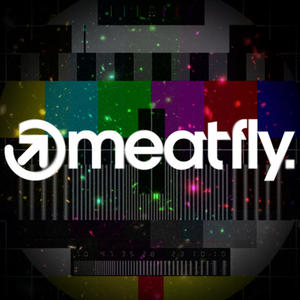 Profile picture for MEATFLY