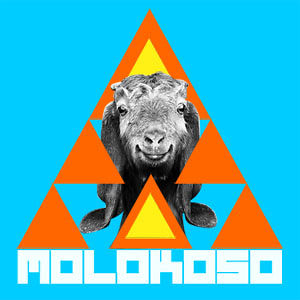 Profile picture for MOLOKOSO // Pablo Balmaceda