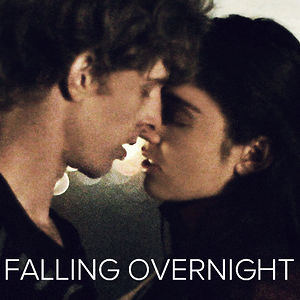 Profile picture for Falling Overnight