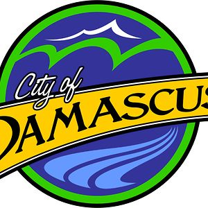 Profile picture for City of Damascus