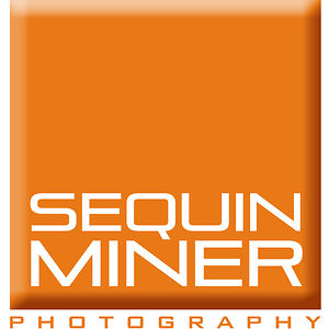 Profile picture for Sequin Miner Photography Co.