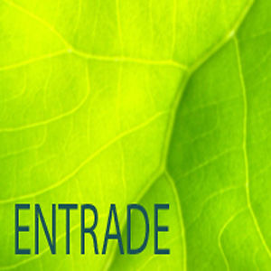 Profile picture for Entrade