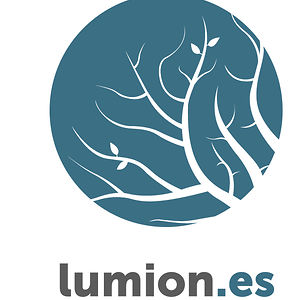Profile picture for Lumion.es