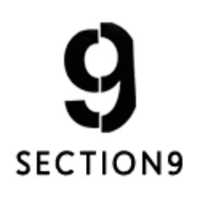 Profile picture for Section 9