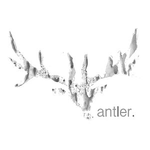 Profile picture for Antlervideo