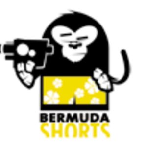 Profile picture for BermudaSHORTS