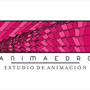Profile picture for ANIMAEDRO estudio de animación