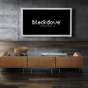 Profile picture for Blackdove