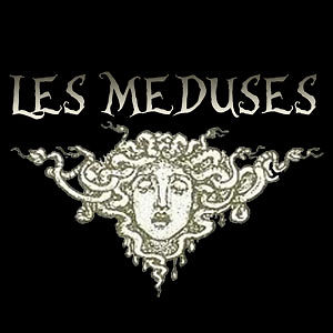 Profile picture for LES M&Eacute;DUSES