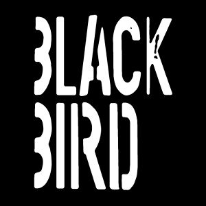Profile picture for BLACKBIRD Film
