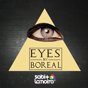 Profile picture for Boreal Eyes Channel
