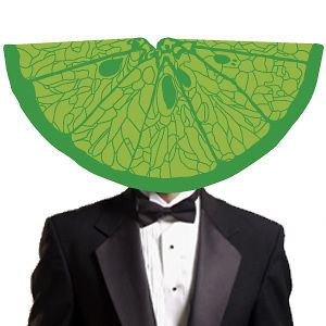 Profile picture for Citrus Ceremonies