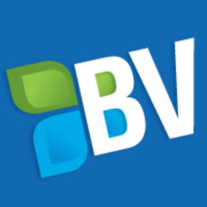 Profile picture for BigVisible Solutions