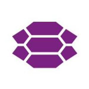 Profile picture for The Purple Turtle