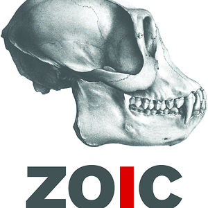 Profile picture for Zoic Studios