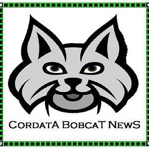 Cordata Elementary