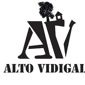 Profile picture for Alto Vidigal
