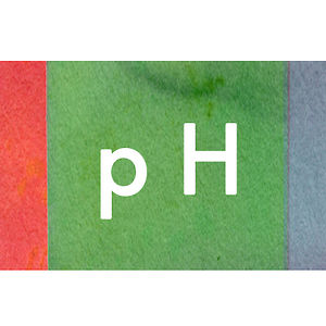 Profile picture for pH Level Studio