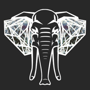 Profile picture for Elefante Diamante