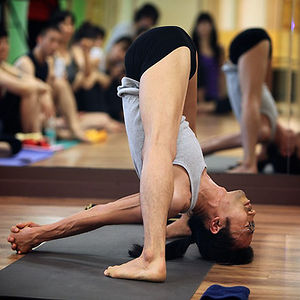 Profile picture for Ashtanga Korea