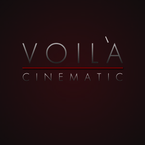 Profile picture for Voila Cinematic
