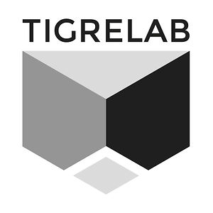 Profile picture for Tigrelab