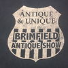The Antique Show