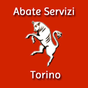 Profile picture for Abate Servizi