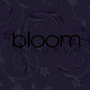 bloom visuals
