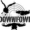 Downfowl