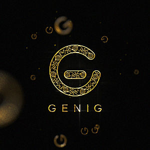 Profile picture for GENIG Studio