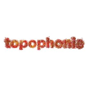 Profile picture for Topophonie Group