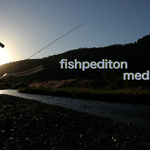 Profile picture for Fishpedition