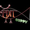 Edit Guppy Post Production