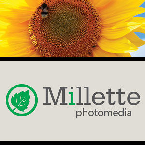Profile picture for Millette PhotoMedia