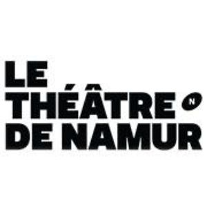 Profile picture for THEATRE DE NAMUR