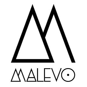 Profile picture for Malevo