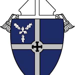 Profile picture for Bismarck Diocese