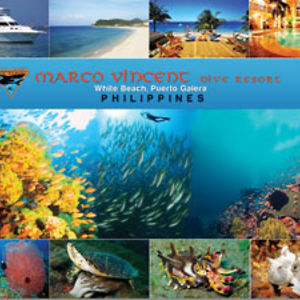 Profile picture for Marco Vincent Dive Resort
