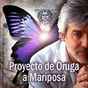 Proyecto de Oruga a Mariposa