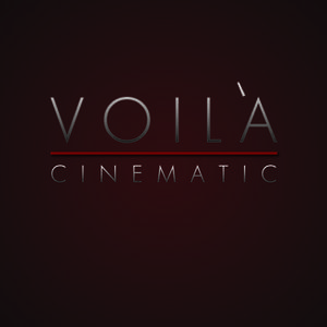 Profile picture for Associate Films: Voila Cinematic
