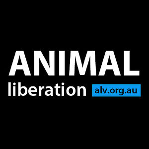 Profile picture for Animal Rights